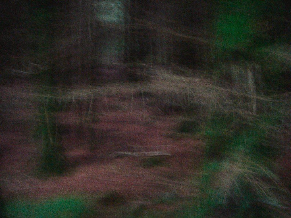 damien-odoul, les-visions, galrie-laure-roynette, paris, france, solo-show, photography, 2016