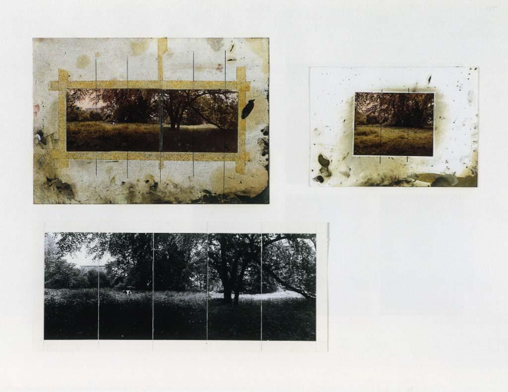gerhard-richter,painting,photo-pantin,parkstuck,venice,photo-realism