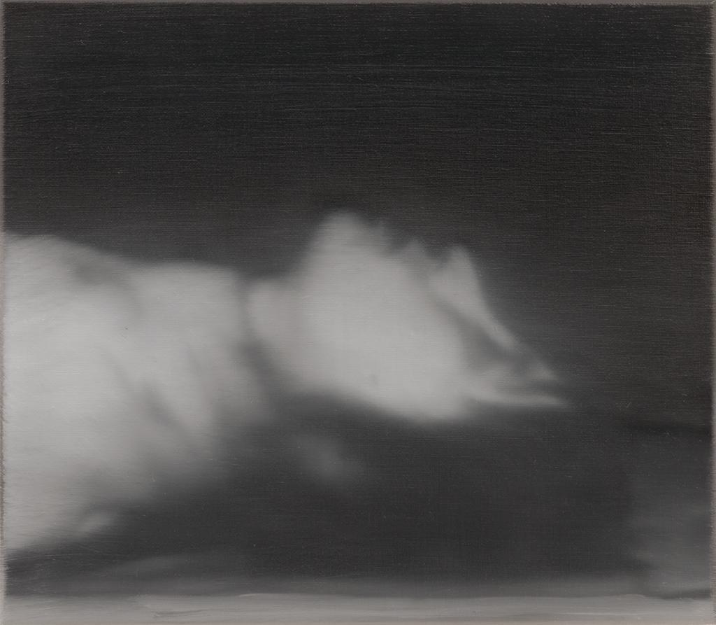 ulrike-meinhof,gerhard-richter,painting,baader,photo-realism