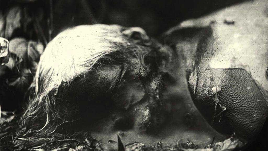 sally-mann,photography,body-farm,collodion,pictorialism