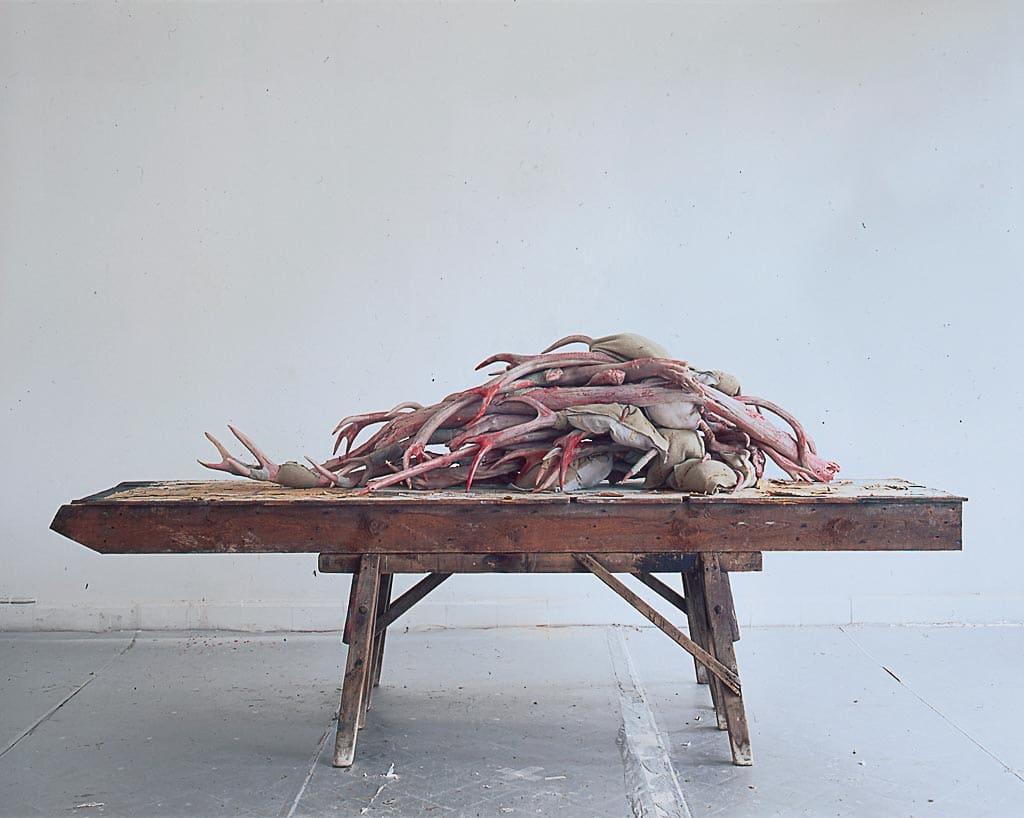 berlinde-de-bruyckere,acteon,sculpture