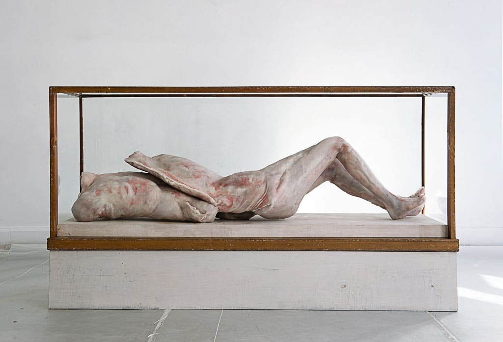 erlinde-de-bruyckere,sculpture,vitrines